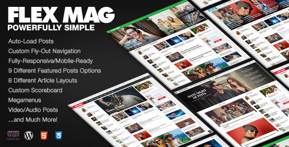 Flex Mag - Responsive WordPress News Theme v2.0.1