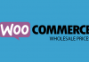 WooCommerce Wholesale Prices v2.2.1 - WordPress Plugin
