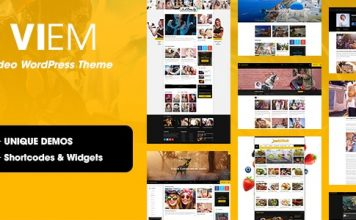 Viem v1.0.9.1 - Video WordPress Theme