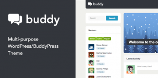 Buddy v2.20.3 - Multi-Purpose WordPress / BuddyPress Theme