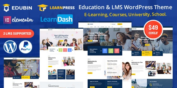 Edubin v6.2.9 - Education LMS WordPress Theme