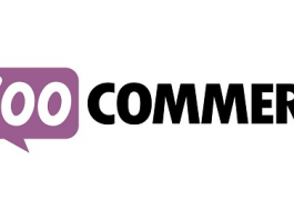 reCaptcha for WooCommerce 2.4