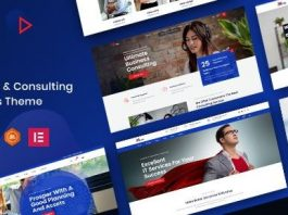 Miva - Business Consulting WordPress Theme